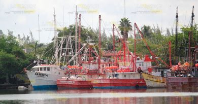 Pesca indiscriminada de atún, en grado de ecocidio, advierten en Tuxpan
