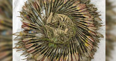 «Penacho de Cuauhtémoc» no es prehispánico ni de Mesoamérica, revela estudio