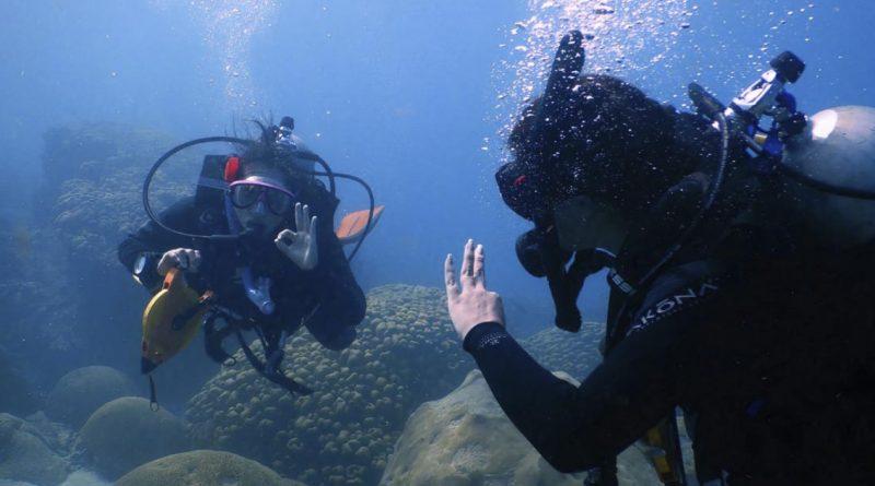 Monitoreo biológico al sistema de arrecifes en Tuxpan